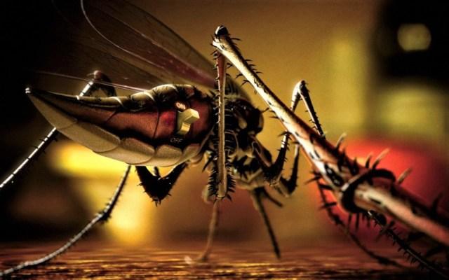 DARPA está creando insectos infectados con virus, denuncian científicos