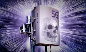 Médica explica los peligros del 5G al senado de EEUU