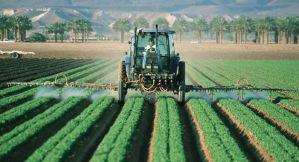 El veneno y los envenenados en Argentina: glifosato, soja, enfermedades y política