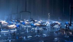 Comienza la clonación humana: Científicos crean mini cerebros con sentimientos