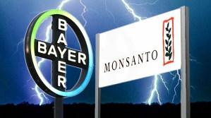 Monsanto y Bayer se enfrentan a una demanda colectiva por 500 millones de dólares en Canadá