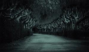 Una historia siniestra de la carretera
