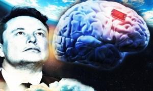 """Neuralink: el chip cerebral que se viene """"Tu mente almacenada en la nube"""""""