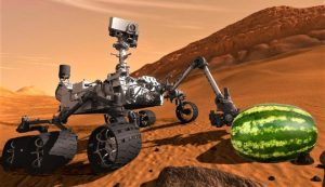"""El New York Times anuncia """"el descubrimiento de sandías en Marte"""" por error"""