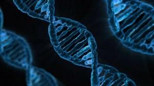 España: El gobierno aprueba el banco de ADN para controlar y tener nuestro ADN