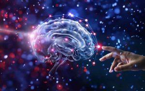 """Científicos descubren un """"universo multidimensional"""" en el cerebro humano"""