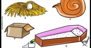 Inmobiliarias y el sistema de mercado