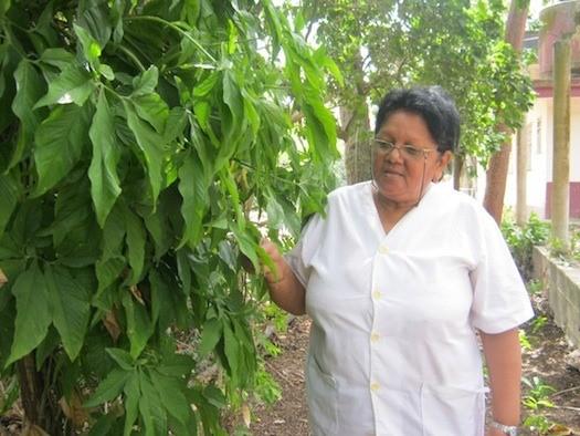 Ramona Oviedo, botánica del Instituto de Ecología y Sistemática de La Habana.