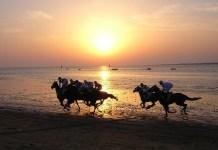 Carreras de caballos por la playa de Sanlúcar. Al fondo el Lubricán.