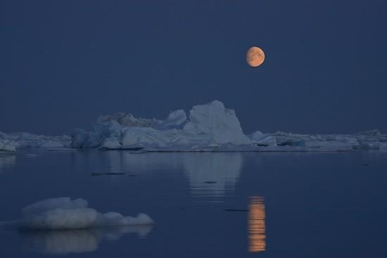 Greenpeace: casquete polar ártico