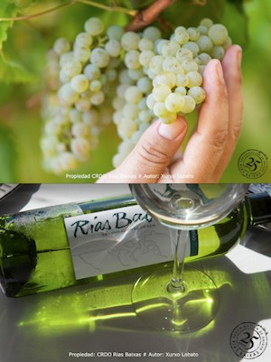 Xurxo Lobato El vino del mar. D.O. Rías Baixas Fundación Novacaixagalicia 2 300 Xurxo Lobato abre la temporada con «Rías Baixas, el vino del mar»