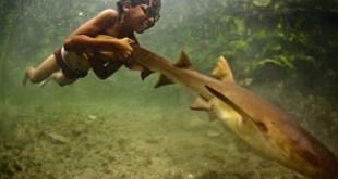 Tierras indígenas reúnen 80 por ciento de la biodiversidad