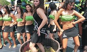 Fiesta de la Vendimia en Ica, Perú
