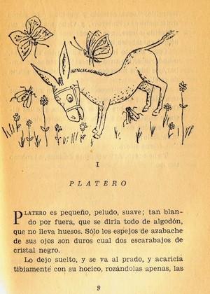 Platero-I