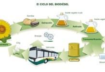 ciclo-biodiesel