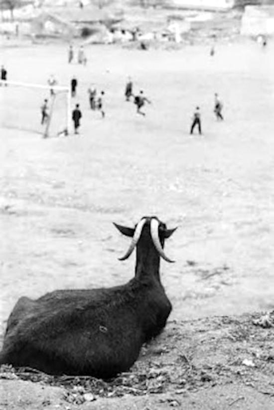 Ramón Masats, Madrid, 1962