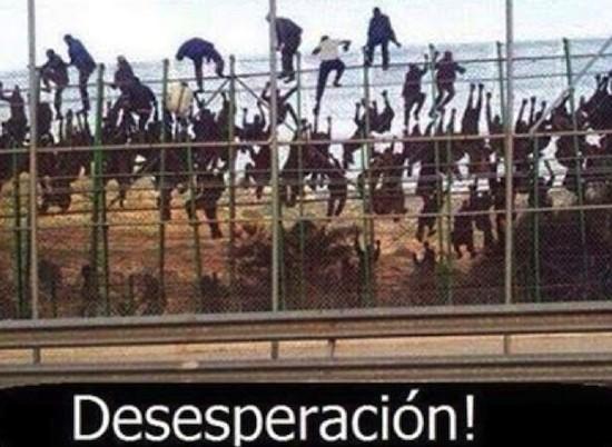 inmigracion-Melilla-desesperacion