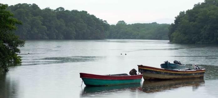 UNDP/Roberto Machazek: La selva del Darién, en Panamá.