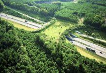 Holanda ecoducto sobre la A50 para la fauna