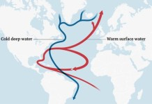 AMOC corriente del golfo