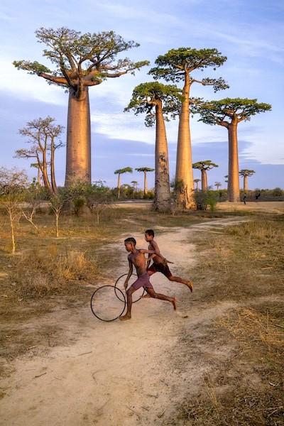 McCurry: Madagascar niños juegan con aros debajo de los baobab, 2019. Retouched Morgan Shortell, Emily Rogers, Eolo Perfido, Ashley Crabill 04/22/2020