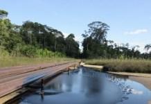 Perú Amazonia contaminaciónn plomo petróleo