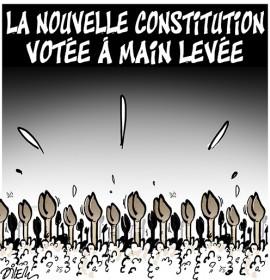 Así ve el caricaturista Dilem (diario Liberté-Algérie) la recién estrenada reforma constitucional de su país.