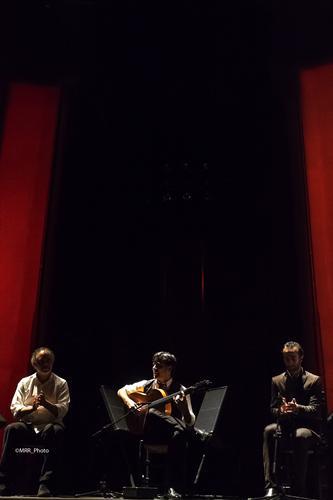Suma Flamenca. Daniel casares. Teatro de la Abadía. Foto Manuel Rodriguez