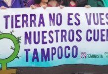 Ecofeminismo-Maria-Garrido-Twitter