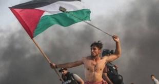 Mustafa Hassouna: A'ed Abu Amro símbolo de la resistencia palestina