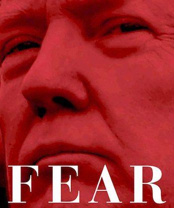 Woodward Fear Miedo
