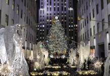 Adriana Bianco: árbol de Navidad en el Rockefeller Center