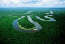 Amazonia-utn-edu