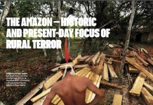 Brasil-deforestación-ilegal