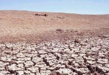 Greenpeace, desertificación en España