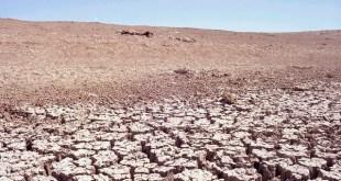 España afronta un proceso de desertificación preocupante