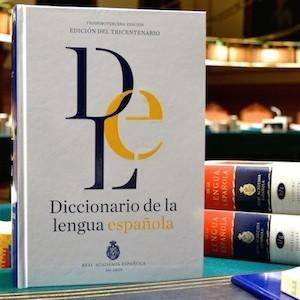 dicionario-lengua-23