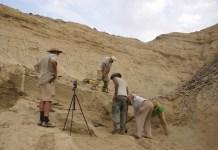 Excavaciones en el yacimiento Ado Qwawleh