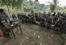 Unidad de las FARC en proceso de desarme. Foto:pulzo.com