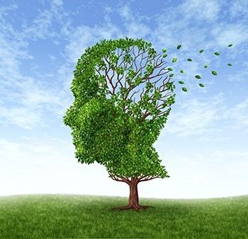 FDA: ilustración sobre la pérdida de memoria