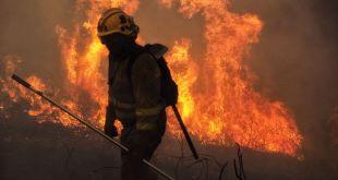 Terrorismo incendiario vs política forestal: la realidad de España