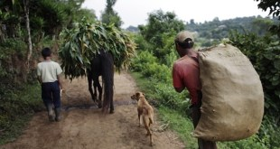 Guatemala: la objetada prioridad del desarrollo rural