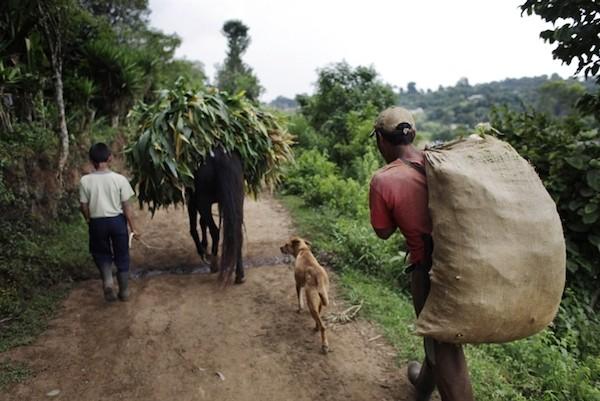 Guatemala necesita invertir en desarrollo rural