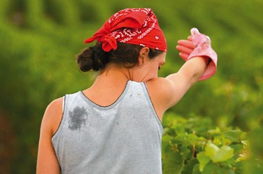 Mujeres en la agricultura