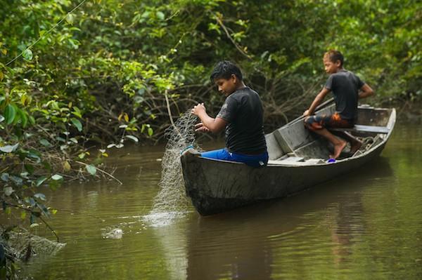 Niños munduruku pescan en un afluente del río Tapajós, en Sawré Muybu de tierras indígenas, el hogar de los Munduruku, estado de Pará, Brasil.