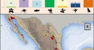 México se suma a la alianza para evitar la extinción de especies