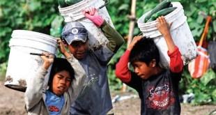Trabajo infantil: el objetivo de erradicarlo en 2025 pierde fuerza
