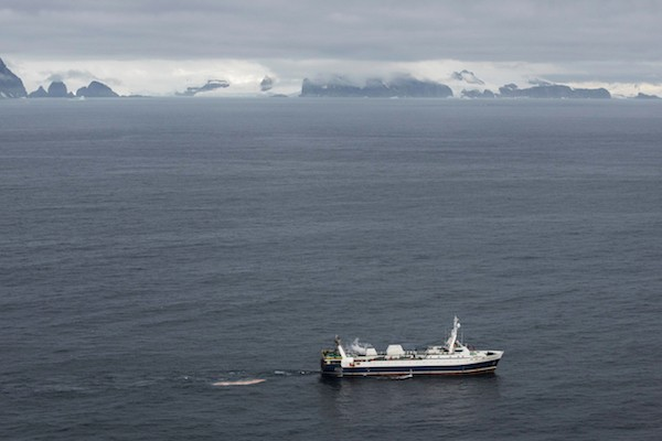 Barcos de pesca de krill en las cercanías de Trinity Island.  Greenpeace está realizando investigaciones científicas y documentando la fauna única de la Antártida, para fortalecer la propuesta de crear la mayor área protegida del planeta, un Santuario del Océano Antártico. FOT: Daniel Beltrá