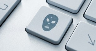 pirateria-digital-bloomua-123RF