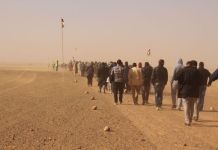 Refugiados saharauis cruzan la frontera con Argelia